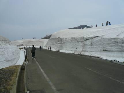 鳥海ブルーライン 雪の壁.jpg