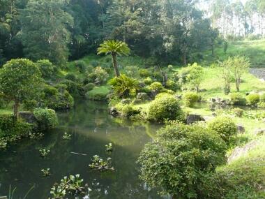 都農神社庭園