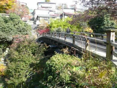 日本三奇橋 猿橋