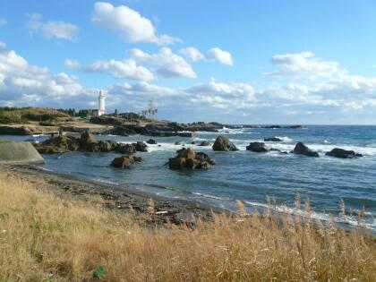 野島崎灯台 遠くから