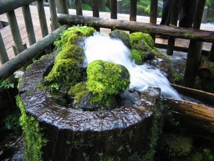 羊蹄のふきだし水3.jpg