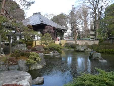 蓮花院庭園1.jpg