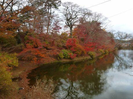 棚倉城の紅葉3.jpg