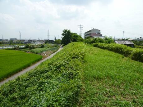 石田堤6.jpg