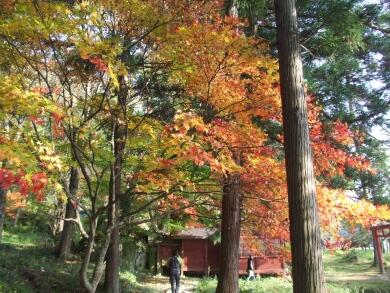 安久津八幡神社の紅葉