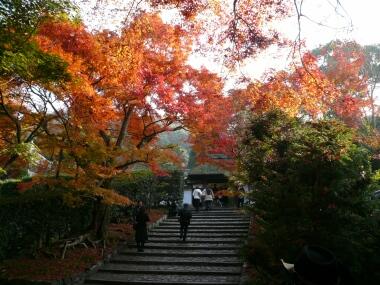 安楽寺の紅葉