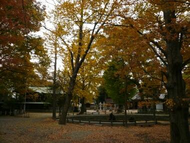 東岩清水八幡神社の紅葉