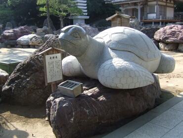金剛福寺の亀