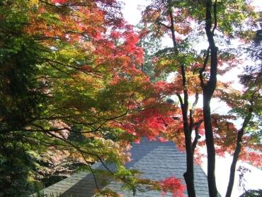 黒岩虚空蔵 紅葉
