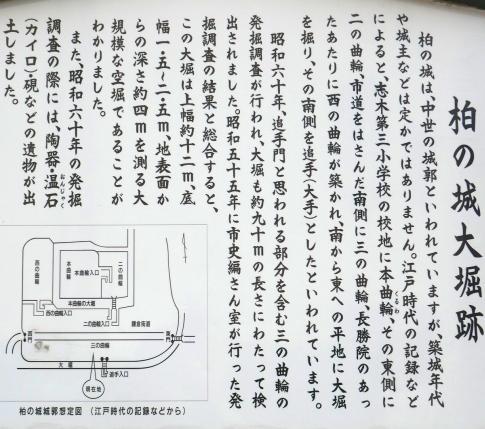 13柏の城.jpg