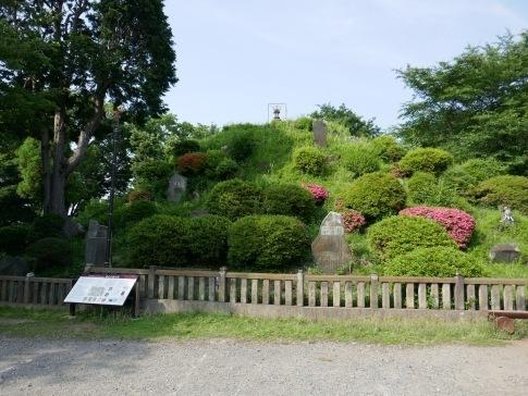 15敷島神社4田子山富士塚.jpg