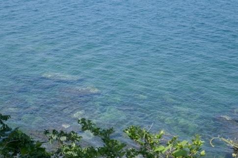 32水俣の海.jpg