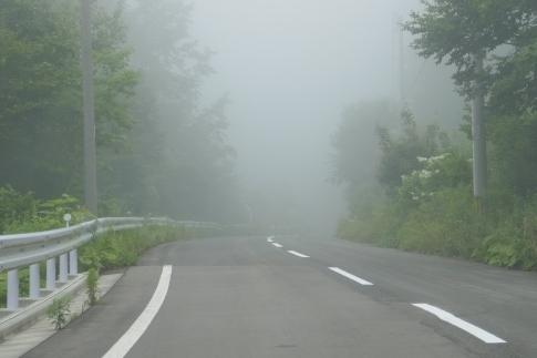 46霧の中.jpg
