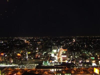 ニックシティ夜景3.jpg