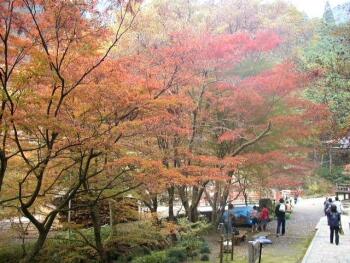 横蔵寺紅葉2.jpg
