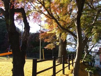笠間城紅葉4.jpg