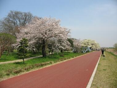 関宿城3.jpg