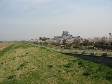 関宿城1.jpg