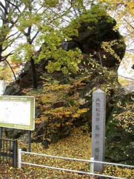 岩神の飛石.jpg