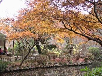 京王百草園1.jpg
