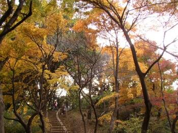 京王百草園2.jpg
