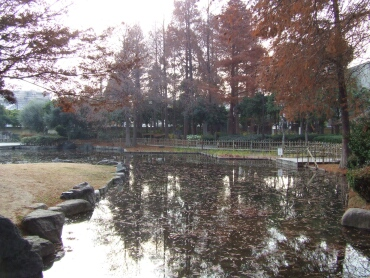 近松公園2.jpg