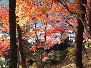 香嵐渓紅葉1.jpg