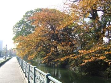 高崎城紅葉1.jpg