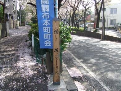 桜坂の碑.jpg