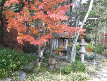諸戸氏庭園紅葉3.jpg