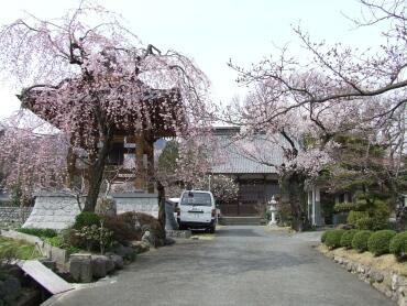 上沢寺本堂.jpg