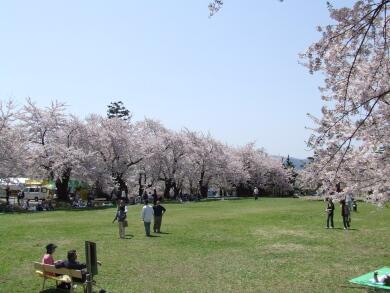 真人公園1.jpg
