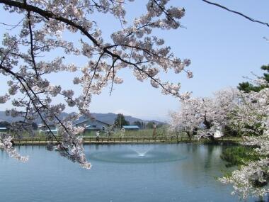 真人公園2.jpg