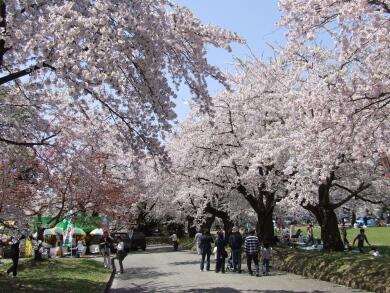 真人公園4.jpg
