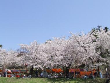 真人公園5.jpg