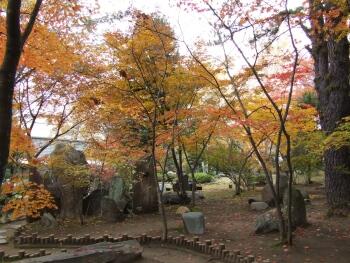 浅間火山岩石公園1.jpg
