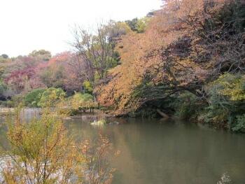新江戸川公園2.jpg