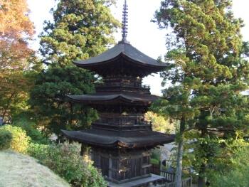大法寺三重塔(見返りの塔).jpg