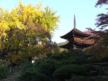 前山寺三重塔3.jpg