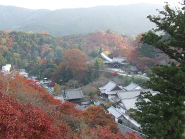 長谷寺大悲閣からの眺望.jpg