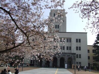 東工大の桜.jpg