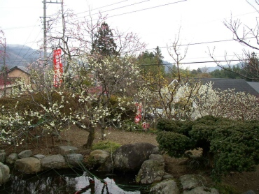 天沢院(青梅)3.jpg