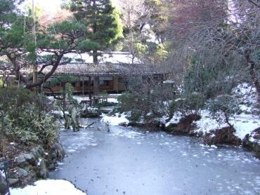 百草園冬2.jpg