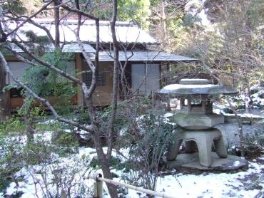 百草園冬1.jpg