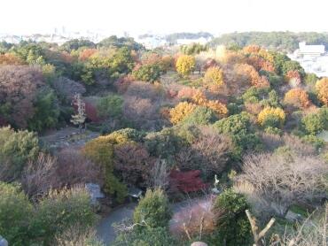 浜松城より2.jpg