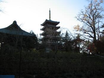 本土寺五重塔.jpg