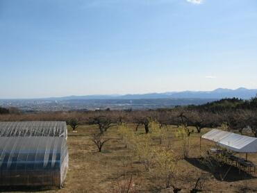 箕郷梅林からの景色.jpg