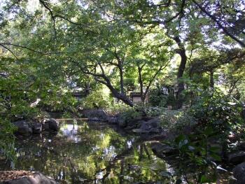 名主の滝公園_東京観光名所1.jpg