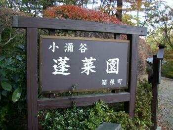 蓬莱園(小涌谷)紅葉1.jpg