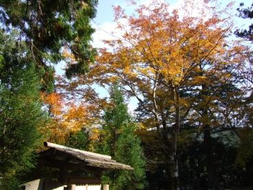 北畠氏館跡庭園3.jpg